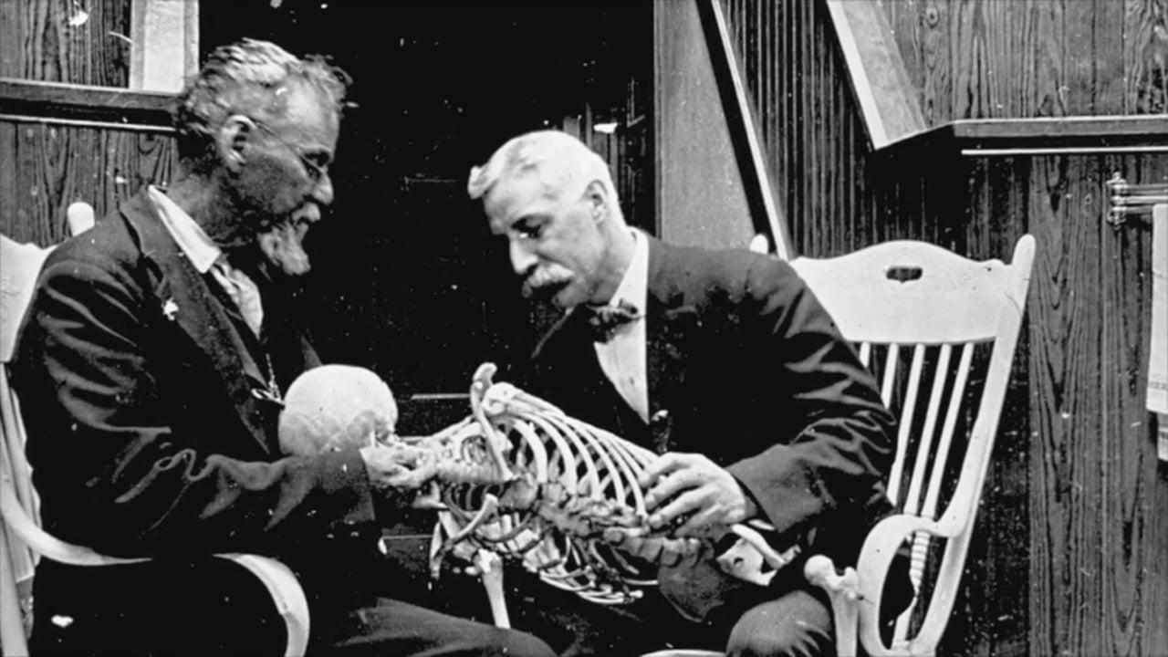 Osteopatiens historie